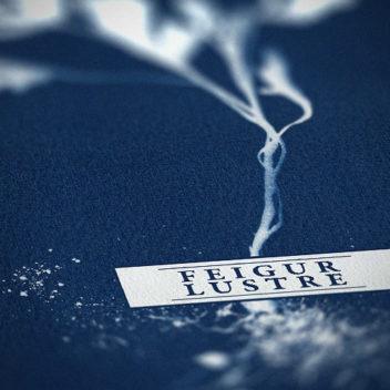 Feigur & Lustre, artwork detail.