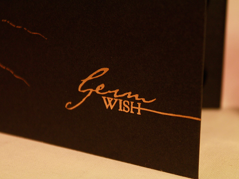 Germ's Wish digibook cover detail.